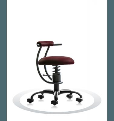 stol žoga spinalis